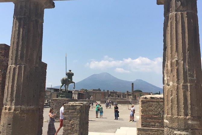 Pompeii Herculaneum and wine testing