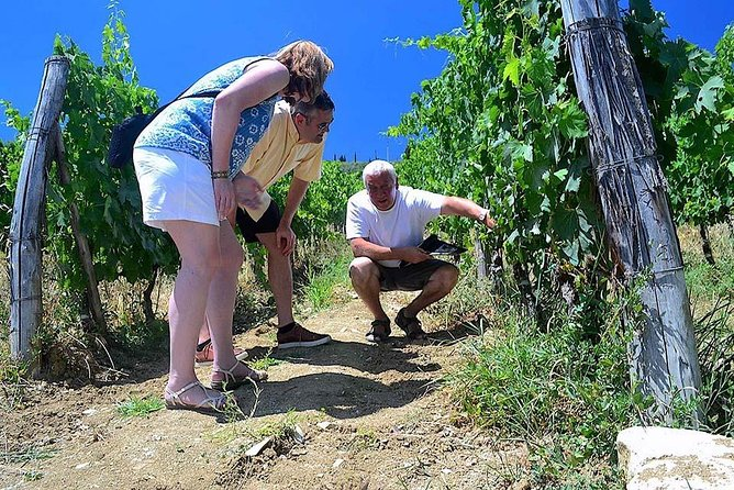 Chianti Classico and Super Tuscan 3 Winery Tour