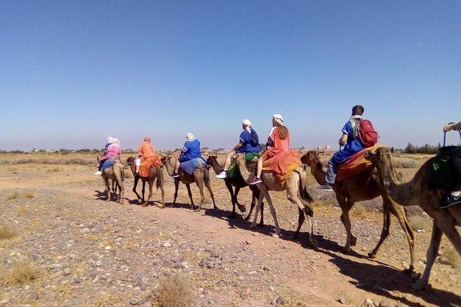 Day Trip Atlas Mountain Experience