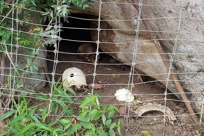 Half Day Private Tour at Bandia Animals Reserve