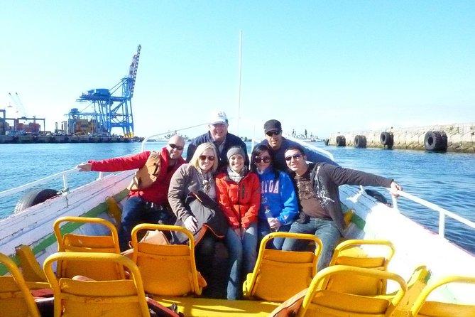 Valparaiso & Viña del Mar with Boat Ride - Private Day Trip from Santiago