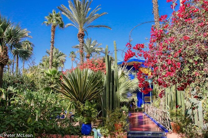 Majorelle Garden, Menara and Anima gardens Private Tour photo 8