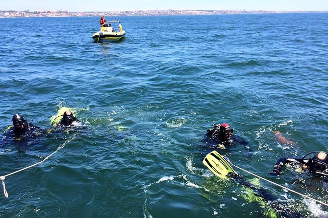 Double dive in the Algarve. Don't stop on the beach!