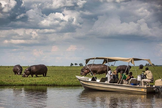 Chobe Safari Experience Day Trip from Livingstone photo 1