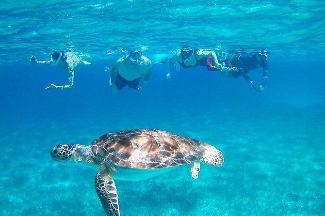 Transfer to Hol-Chan Reserve from San Pedro Ambergris Caye