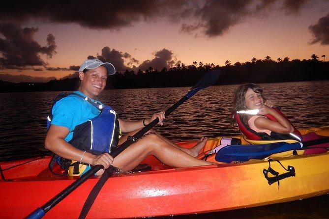 Bio Bay Kayak Tour in Fajardo