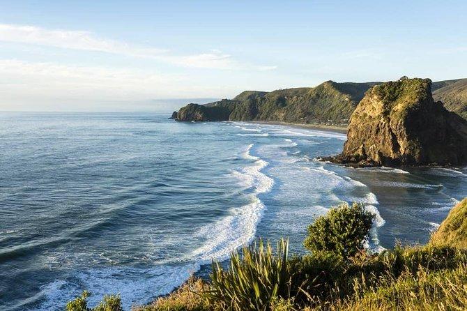 West Coast Discovery - Piha Beach or Muriwai Beach from Auckland