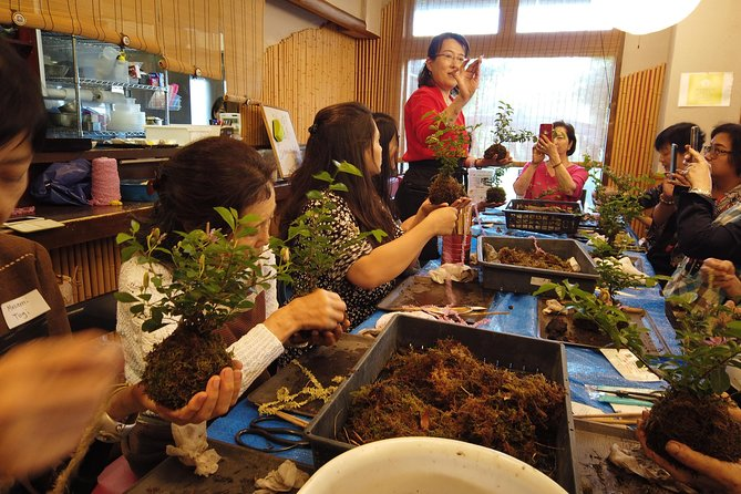 Omiya 1-Day Moss Ball workshop & BONSAI TOUR