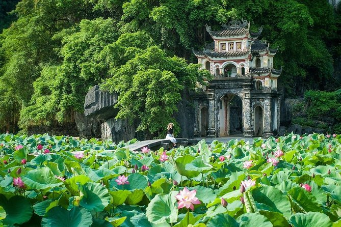Full-Day Small Group Tour to Ninh Binh and Trang An Grottoes from Hanoi photo 9