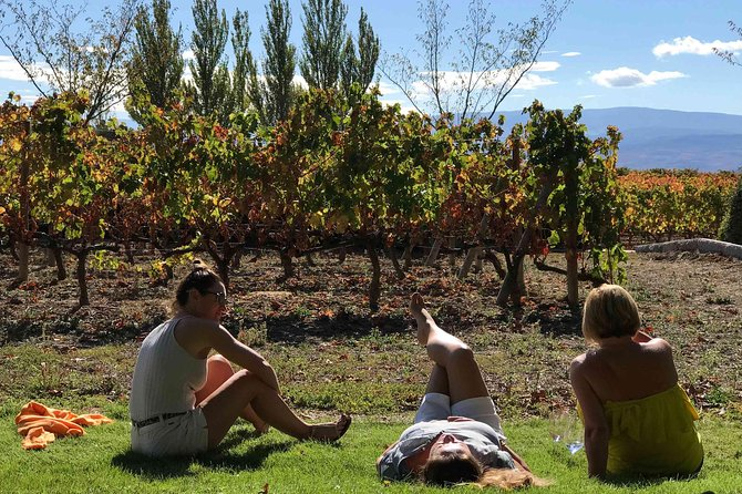 Rioja Wineries and Laguardia Tour with Picnic from San Sebastian