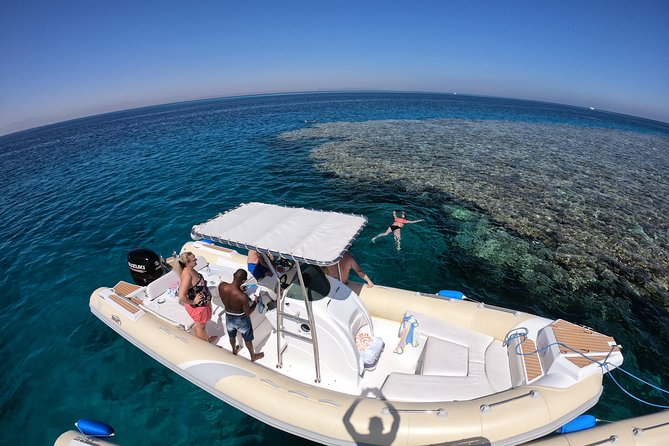 Private Dolphin Watching And Snorkeling Tour
