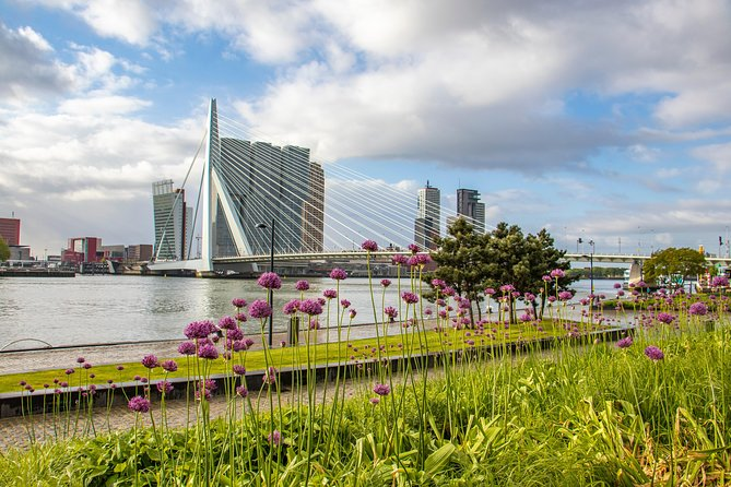 Photogenic Rotterdam with a Local