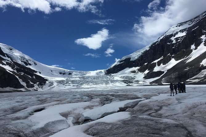 Athabasca Glacier Half-Day Tour