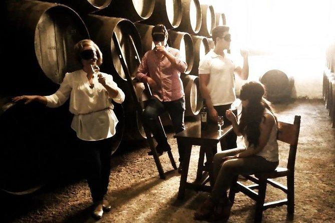 Wine experiences in Jerez