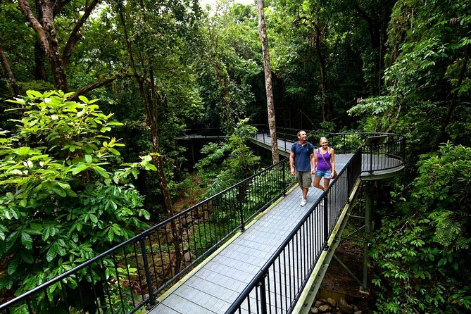 3-Day Best of Cairns Combo: The Daintree Rainforest, Great Barrier Reef, and Kuranda