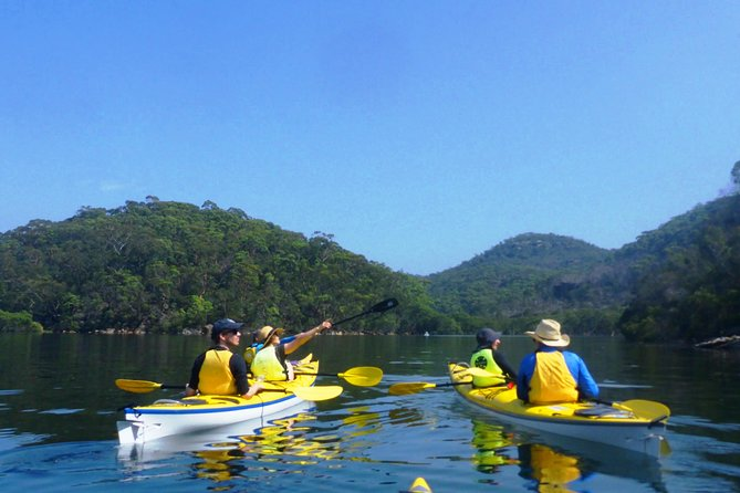 1 Hour Rental Deluxe Double Sea Kayak photo 4
