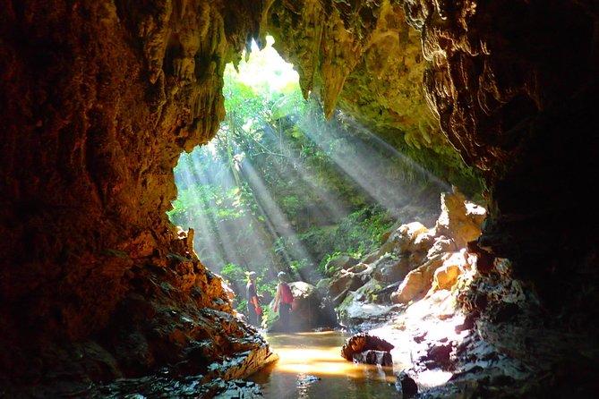 [Okinawa Iriomote] Explore Iriomote Island's Limestone Cave!