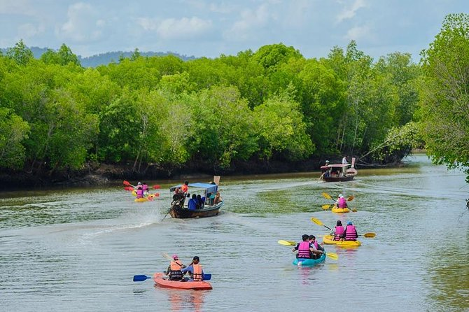 Half Day Mangrove Forest Kayaking Tour From Koh Lanta