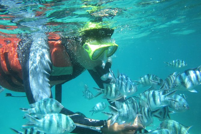 Snorkeling Tour at Blue Lagoon with Private Hotel Transfer
