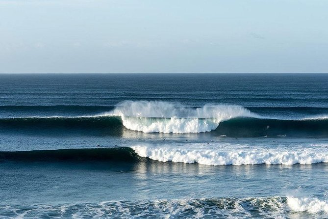 The Ultimate Surfing & Great Ocean Road Experience - 1.5 Days