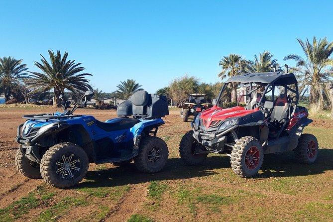 Half-Day UTV 4x4 and Buggy Safari at Lara Bay in Akamas