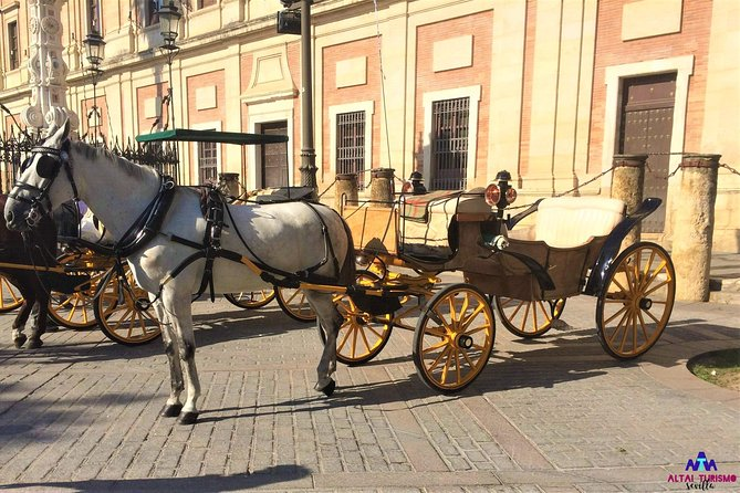 Traditional Horse-carriage Tour of Seville
