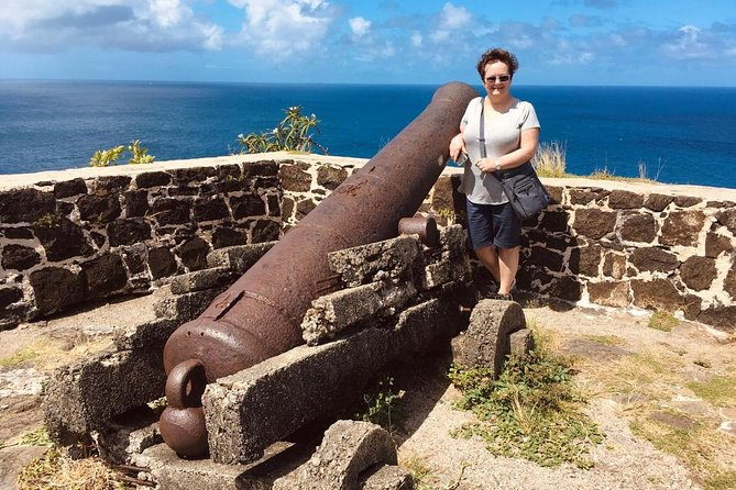 Pigeon Island Beach and Fort Rodney Tour