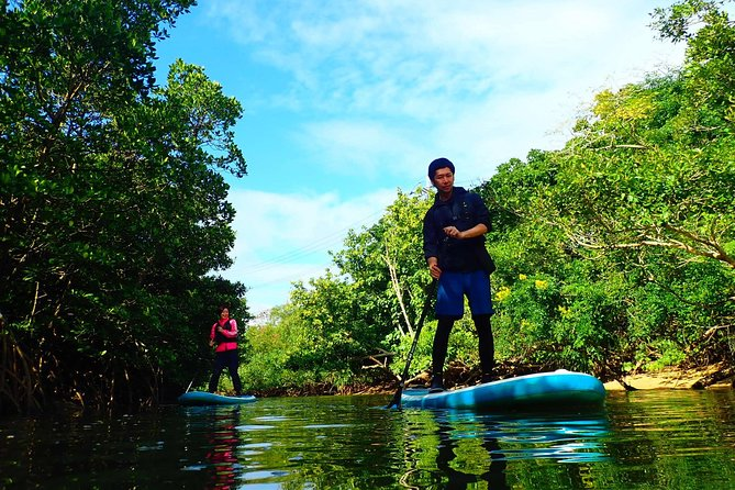 Mangrove SUP or Canoe & Caving & Experience on Coral Island