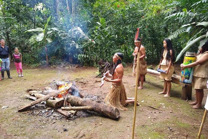 Native cultural tours