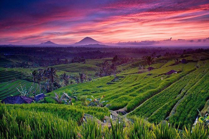 Private Bali Full Day Car Charter - Jatiluwih and Tanah Lot Sunset Tour