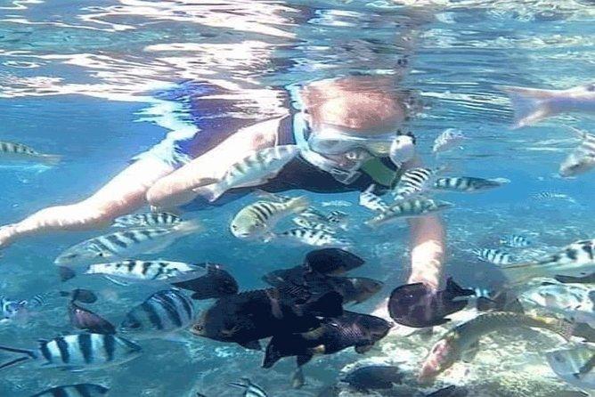 Bali Snorkeling Trip at Blue Lagoon & Tanjung Jepun