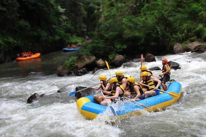 Bali River Rafting and Kintamani Volcano Tour
