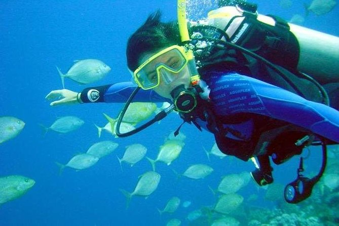 Scuba Diving for Beginners in Didim photo 7
