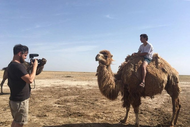 3 Day Nomadic Camel Bactrian Farm Experience - Yurt accommodations !