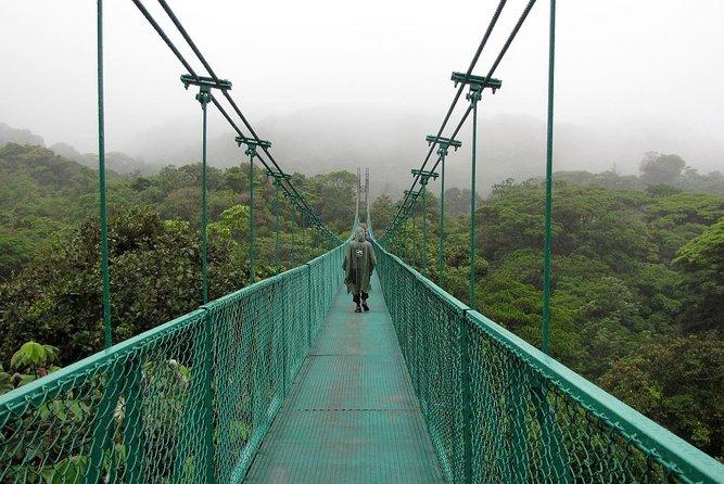 Rain Forest Monteverde