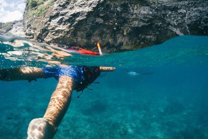 Nusa Penida Manta Snorkeling Tour with Ocean Swing