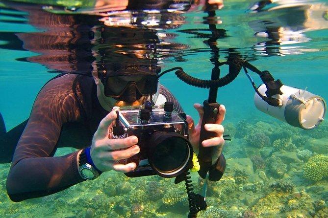 Snorkel Sataya One Day Trip