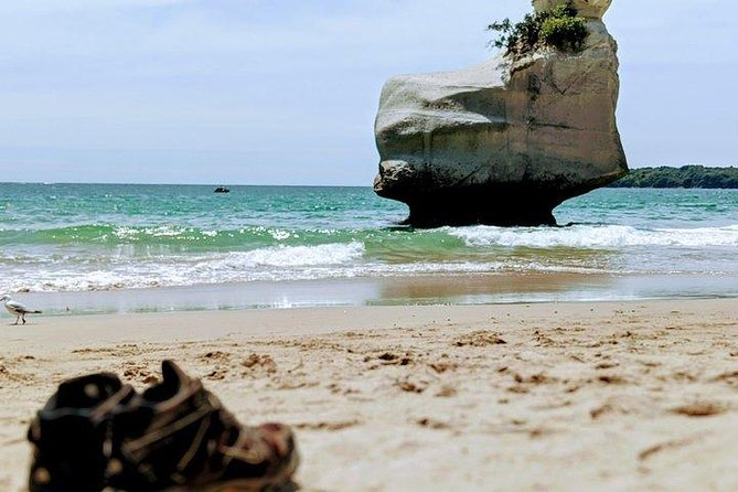 Small group - 4-5 people. Cathedral cove and Hot water beach, Coromandel