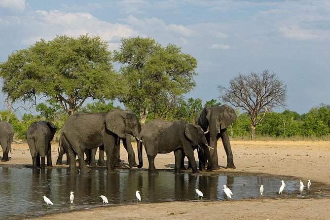 Hwange National Park 3 Days Package
