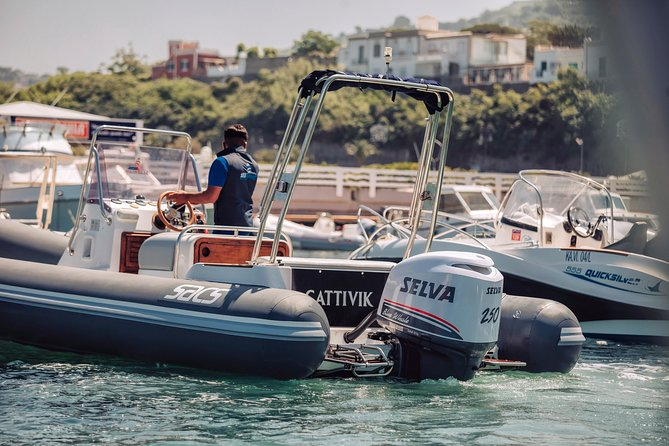 Private tour of Capri island by boat or dinghy