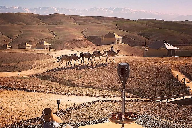 Camel ride, pool, and dinner and transfert in Agafay luxury camp