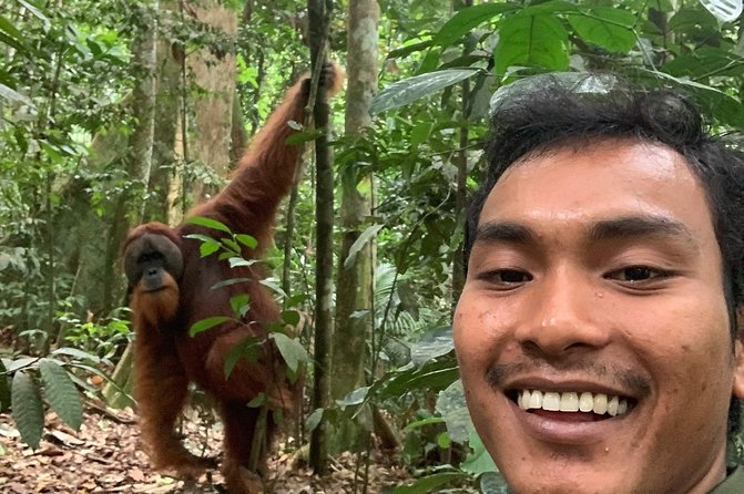 Half-day orangutans adventure in Gunung Leuser photo 9