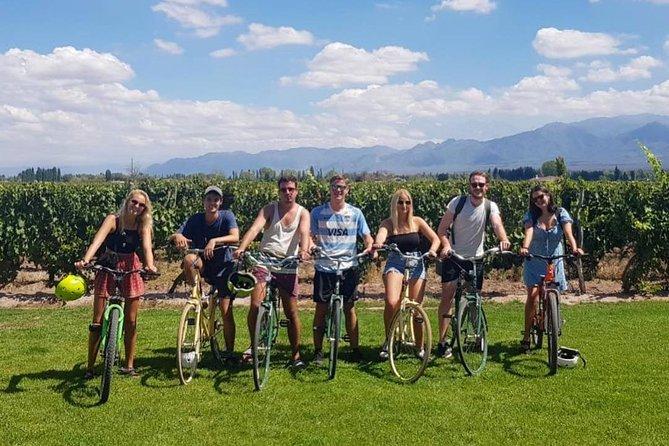 Self-guided tour at malbec region (Luján de Cuyo, Mendoza)