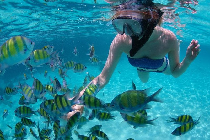 Bali Snorkeling at Blue Lagoon: All-Inclusive