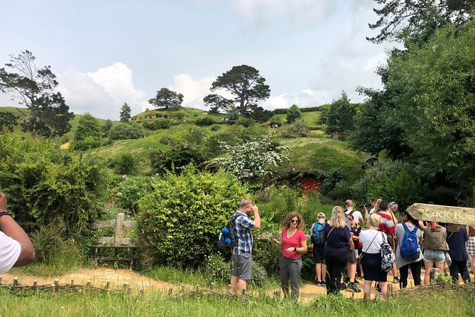 Hobbiton Movie Set & Hamilton Gardens in a small group tour from Auckland Return