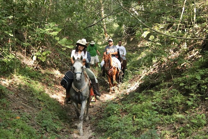 Combo - Jungle Horseback Riding Tour + Jungle Mountain Bike