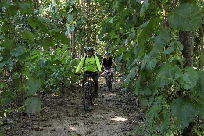 Bicycle Riding Tour