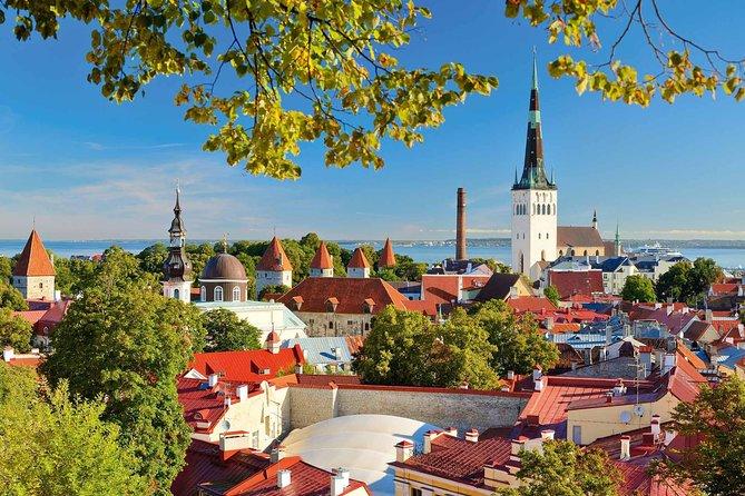 Private Walking Tour of Tallinn Old Town