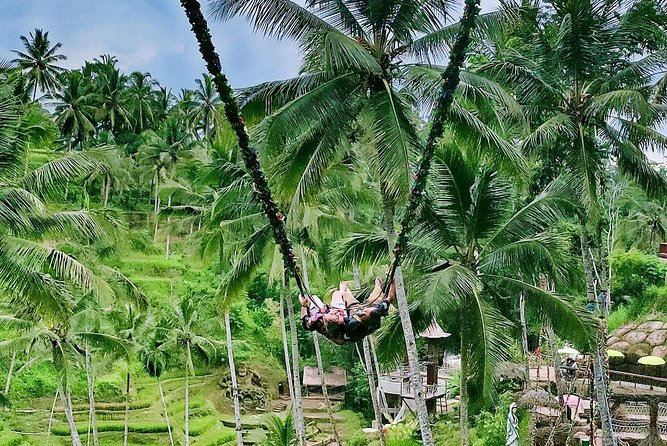 Awesome Bali Private Tour and Guide - Free WI-FI