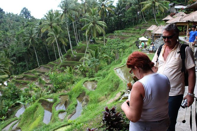 Bali Day-Tour: Ubud Half Day Trip